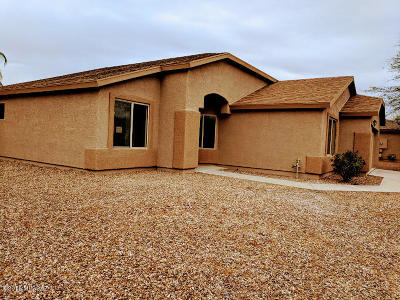 Pima County Single Family Home Active Contingent: 4376 W Gatekeeper Drive
