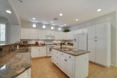 Tucson Single Family Home For Sale: 63686 E Desert Highland Drive