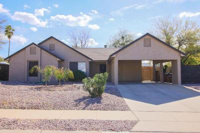 Pima County Single Family Home For Sale: 4851 W Vicuna Drive