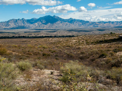 Tubac Residential Lots & Land For Sale: 21 Western Saddle #16
