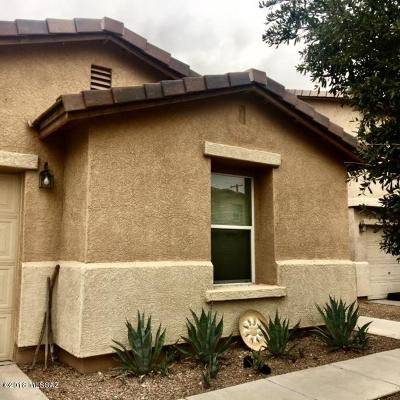 Pima County Single Family Home For Sale: 3233 N Rambling Creek Place