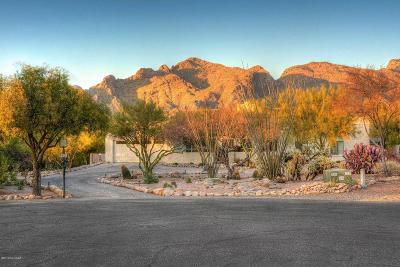 Tucson Single Family Home Active Contingent: 6340 N Placita De Rojelio