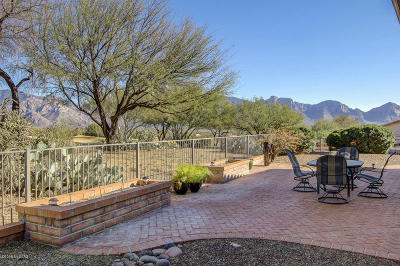 Pima County Single Family Home Active Contingent: 14170 N Fawnbrooke Drive