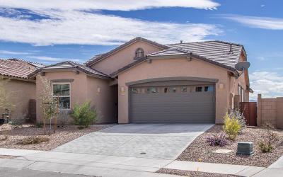Single Family Home For Sale: 11438 E Desert Raptor Loop