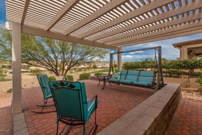 Tucson Single Family Home For Sale: 38066 S Desert Highland Drive
