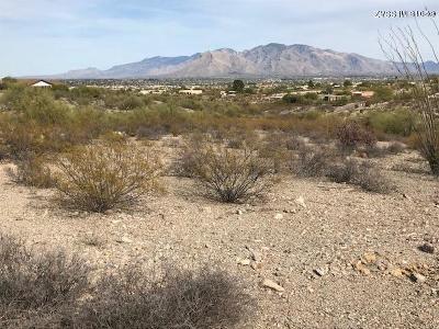 Tucson Residential Lots & Land For Sale: 5245 N Paseo De Los Rancheros