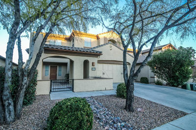 Pima County Single Family Home For Sale: 13558 N Piemonte Way