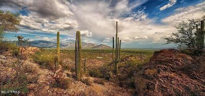 Tucson Residential Lots & Land For Sale: 14388 N Como Drive