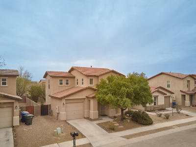 Pima County Single Family Home For Sale: 4282 E River Falls Drive