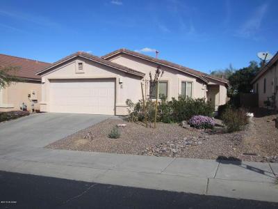 Pima County Single Family Home For Sale: 530 W Tara Danette Drive