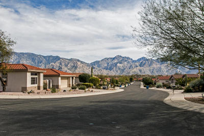 Oro Valley Single Family Home Active Contingent: 13865 N Sutherland Wash Way