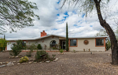 Pima County Single Family Home For Sale: 500 W Placita De La Poza