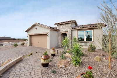 Marana Single Family Home For Sale: 7350 W Cactus Flower Pass