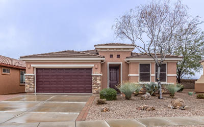 Vail AZ Single Family Home For Sale: $298,900