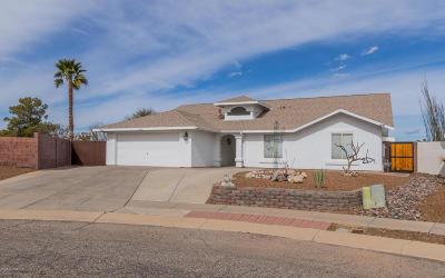 Single Family Home For Sale: 8202 S Placita Del Barquero