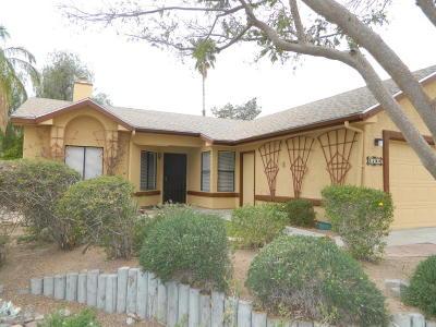 Pima County Single Family Home For Sale: 5189 W Aquamarine Street