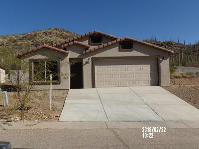 Tucson Single Family Home For Sale: 3304 W Athenee Court