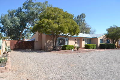 Pima County Single Family Home For Sale: 441 S Stratford Drive