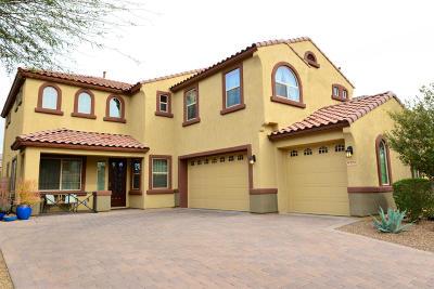 Tucson Single Family Home For Sale: 8492 N Gaetano Loop