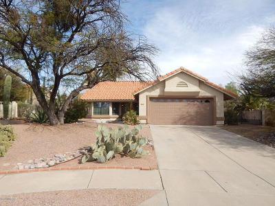 Pima County Single Family Home For Sale: 1081 W Dragoon Springs Place