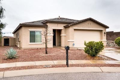 Tucson Single Family Home Active Contingent: 3548 E Silver Buckle Place