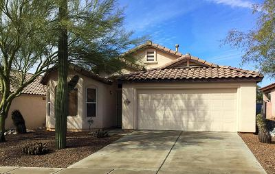 Pima County Single Family Home For Sale: 12713 N Wild Indigo Drive