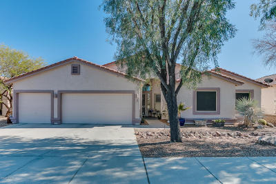 Pima County Single Family Home For Sale: 4101 W Tombolo Trail