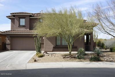 Pima County Single Family Home For Sale: 12285 Whistling Wind Avenue
