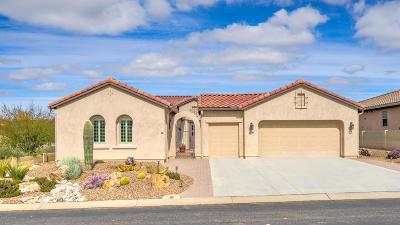 Tucson Single Family Home For Sale: 62674 E Oakwood Drive