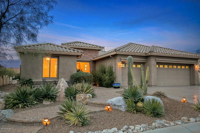 Pima County, Pinal County Single Family Home For Sale: 39614 S Windwood Drive