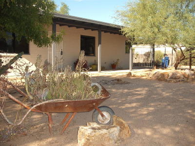 Pima County, Pinal County Single Family Home For Sale: 5017 E 18th Street