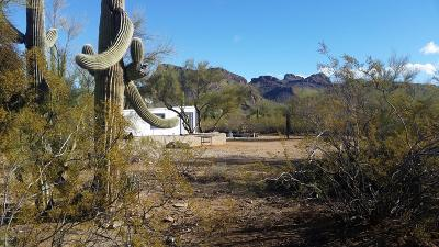 Tucson Single Family Home For Sale: 6801 N Desert View Drive