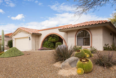 Oro Valley Single Family Home For Sale: 1055 E Coachwood Drive