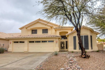 Pima County Single Family Home For Sale: 11361 N Seven Falls Drive