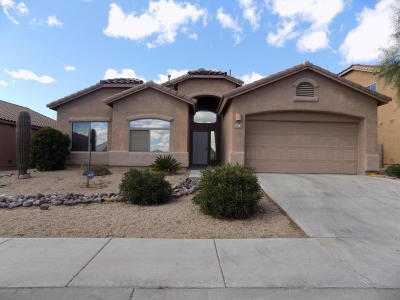Pima County, Pinal County Single Family Home For Sale: 4018 S Alexandrite Avenue