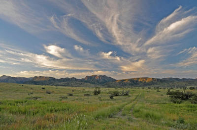 Willcox Residential Lots & Land For Sale: Pinery Canyon