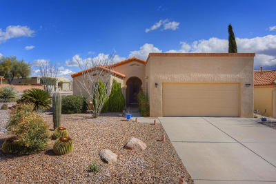 Oro Valley Single Family Home For Sale: 14350 N Rusty Gate Trail