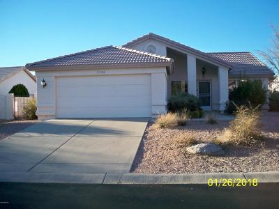 Pima County, Pinal County Single Family Home For Sale: 37950 S Birdie Drive