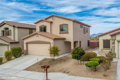 Tucson Single Family Home For Sale: 7461 E Fair Meadows Loop