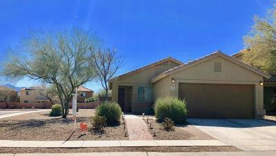 Pima County, Pinal County Single Family Home For Sale: 435 W Amber Hawk Court