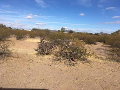 Residential Lots & Land For Sale: 17435 W Fiddler Drive
