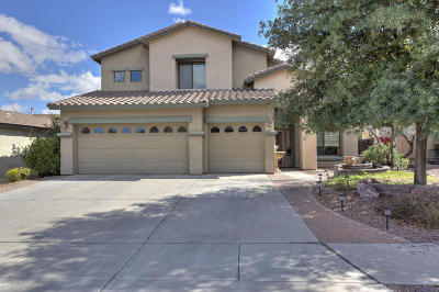 Pima County, Pinal County Single Family Home For Sale: 15211 S Via Rancho Grande