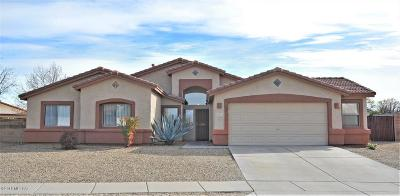 Pima County, Pinal County Single Family Home For Sale: 8664 E Esselmont Drive