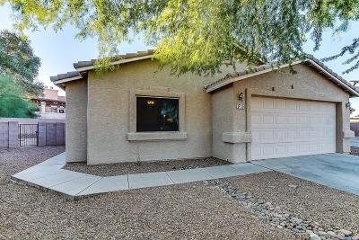 Pima County, Pinal County Single Family Home For Sale: 1365 N Wildcat Diers Road Road