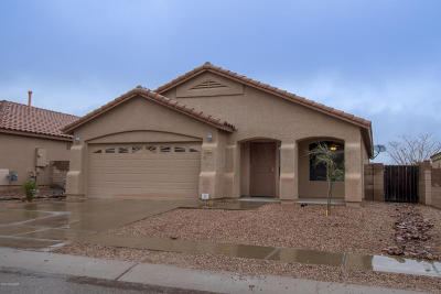 Pima County, Pinal County Single Family Home For Sale: 10563 E Carolina Willow Lane
