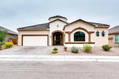 Pima County, Pinal County Single Family Home For Sale: 9675 N Melandra Way