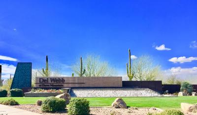 Pima County Single Family Home For Sale: 14006 N Del Webb Trail