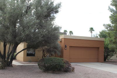Pima County Single Family Home For Sale: 4770 E Water Street