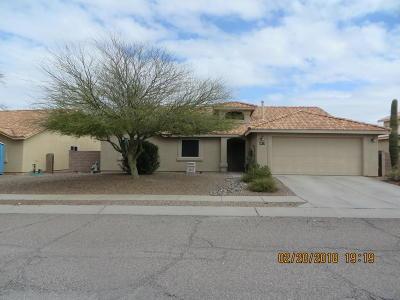 Tucson Single Family Home For Sale: 9673 E Paseo San Rosendo