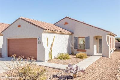 Pima County, Pinal County Single Family Home For Sale: 14553 S Camino Larga Vista